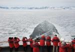 Antarctica Peninsula Cruise